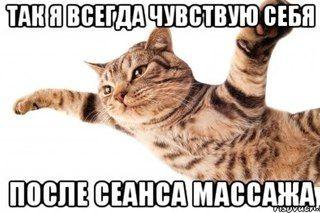 Массажер - ты меня называла. Школа массажа И.И. Войтенко. Отзывы 6